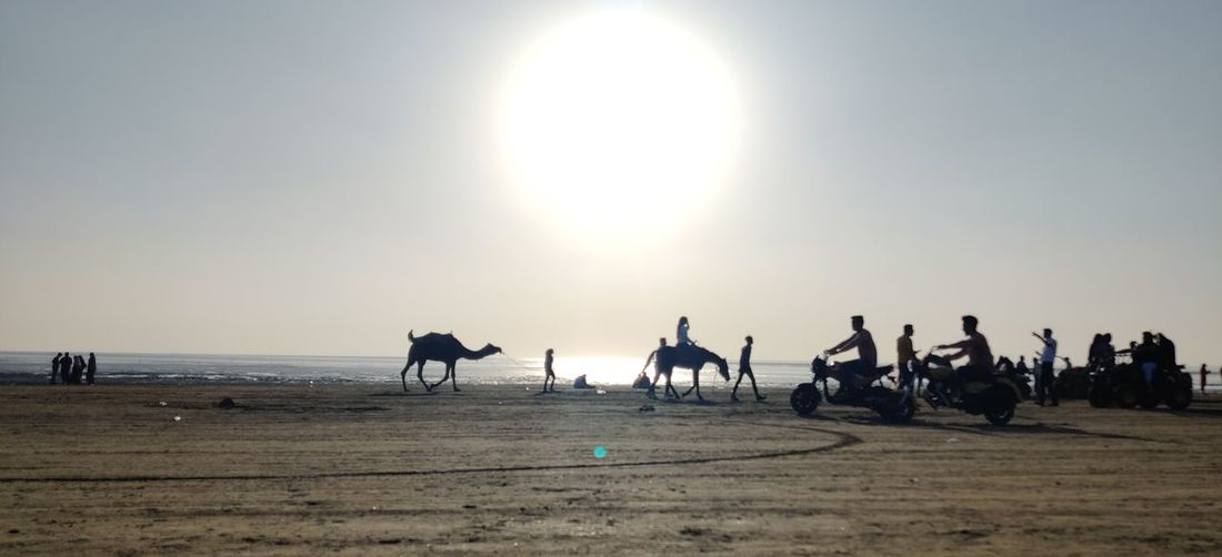 Silhouette people riding horses on beach against clear sky