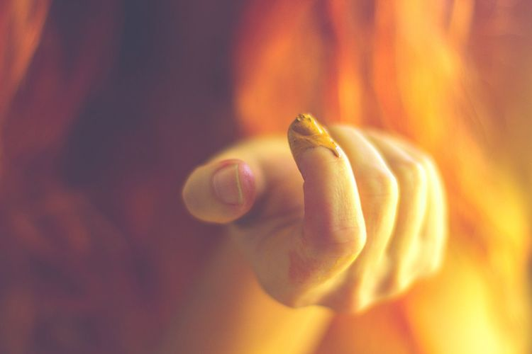 Daffodil Aglow Human Hand Real People Human Finger One Person Close-up Indoors  Animal Themes Human Body Part Day