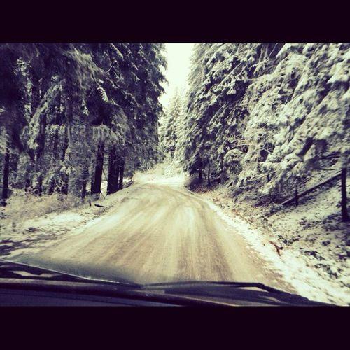 це були..шикарні вихідні:-):-)море емоцій..<3 Шурдин перевалГорішний гори Ліс сніг зима
