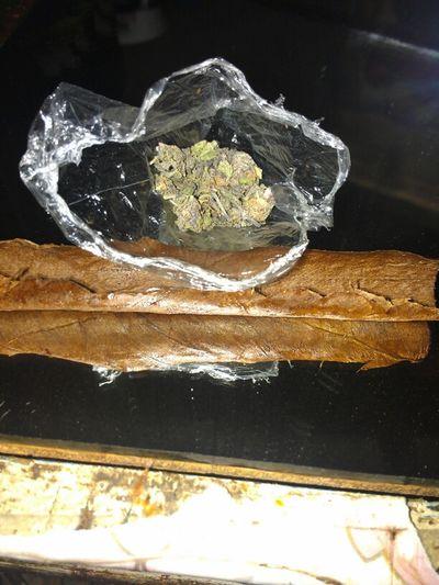 Roll Upp