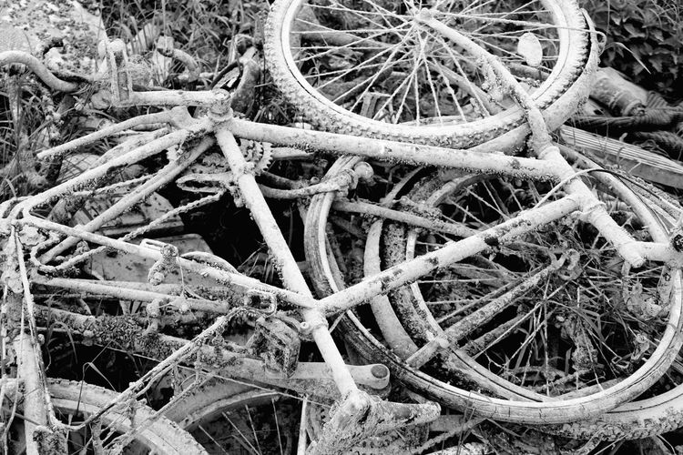 There were so many bycicles in the water. Trash Bycicles Bycicles Trash Black And White Throwaway Society Backgrounds High Angle View Full Frame Close-up Focus On The Story Plastic Environment - LIMEX IMAGINE 10