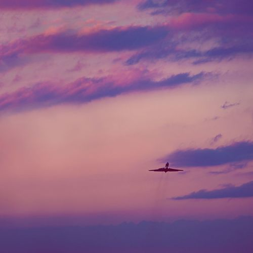Low angle view of airplane flying in sky during sunset
