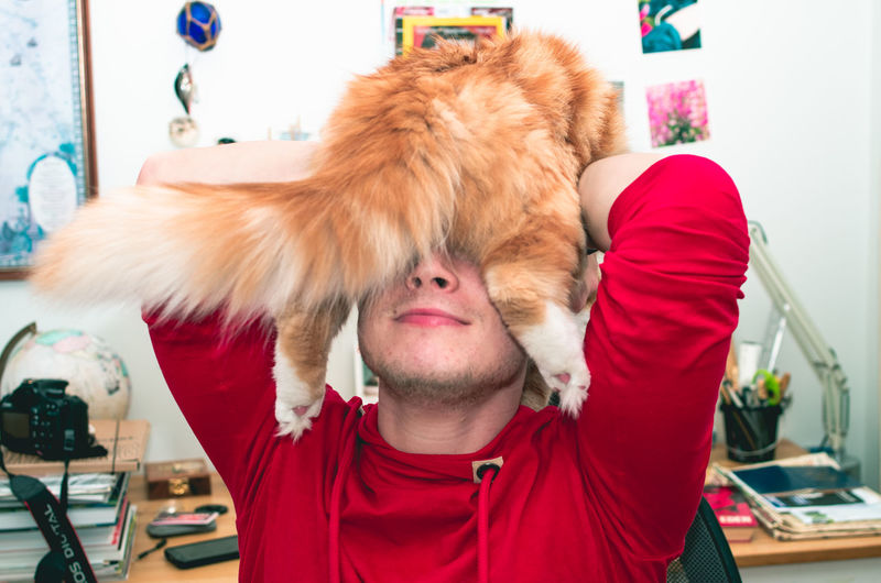 being silly Red One Person Mammal Real People Indoors  Domestic Animals Hairstyle Being Silly Crazy Crazy Man Animals In The Wild Pets Red Cat Happy Funny Home Love Human With Cat Human Body Part