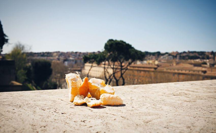Oranges garden // Priimephoto Priime Orange Oranges Garden Rome Italy Rome FUJIFILM X100S Fuji X100s X100S