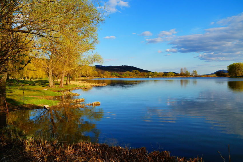 At the lake Relaxing Beauty In Nature Blue Blue Sky Clouds And Sky Day Grass Lake Lakeside Nature No People Outdoors Pilis Pilisszántó Reflection Relaxation Scenics Sky Springtime Tranquil Scene Tranquility Travel Destinations Tree Water