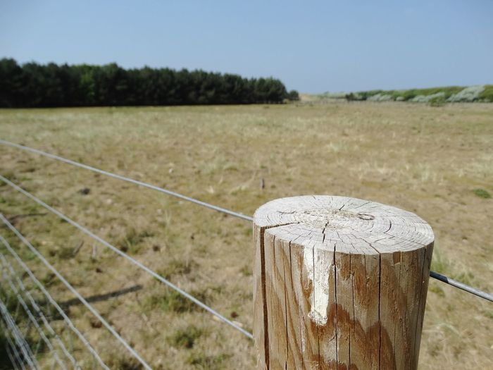 Wooden post next to field. Landscape Field No People Nature Day Outdoors Tranquility Grass Close-up Wooden Post Sky Scenics Beauty In Nature Clear Sky Wooden Wooden Posts Grassy Farm Countryside Fence