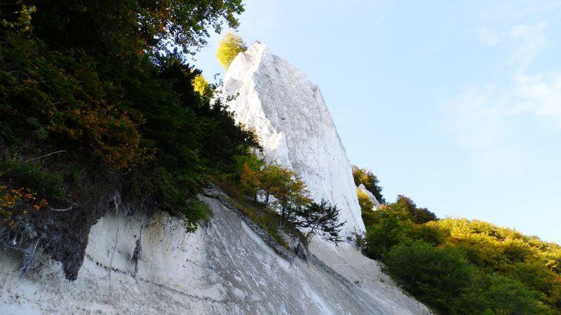 Ostseestrand Tree Sky Rock - Object Outdoors No People Beauty In Nature Cliffs Rügen Rügen Lovers Germany🇩🇪 Ostsee The Week On EyeEm