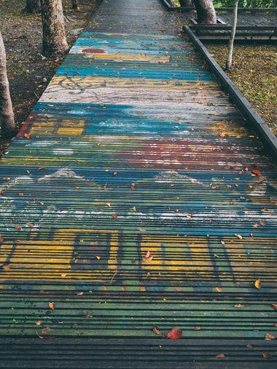 Colorful leaves on boardwalk