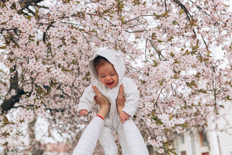 Full length of cute baby girl with cherry blossom tree