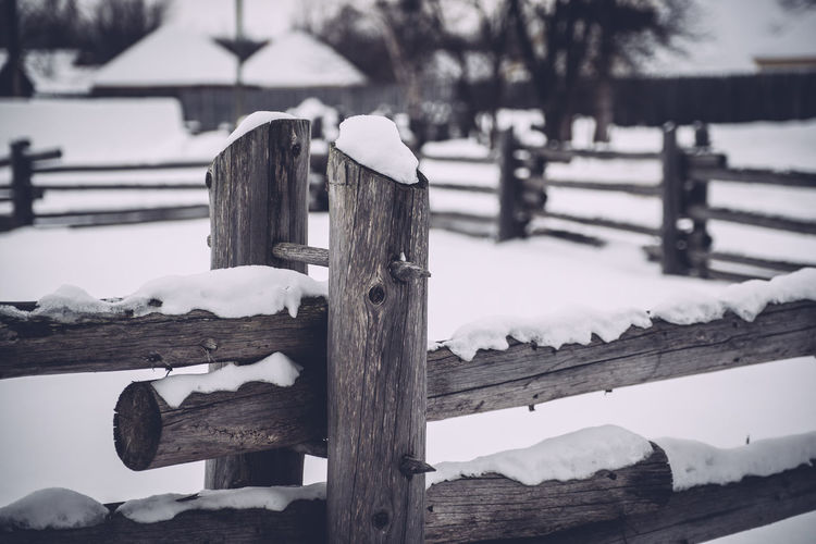 Close-up of snow on wooden fence