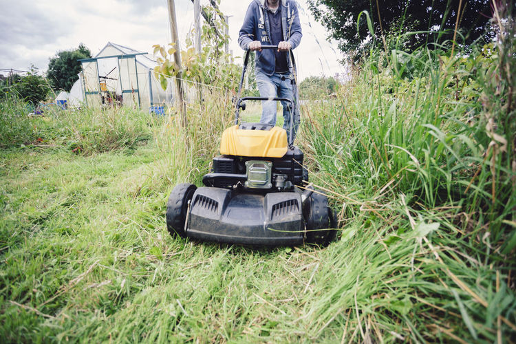 Clearing Cutting Freshness Gardening Grass Lawn Mower Low Angle View Machine Man Path Plants Urban Gardening Working Allotment Fresh Garden Gardening Equipment Grass Cutter Healthy Healthy Lifestyle Lawnmower Lifestyles Mowing Mowing The Grass Outdoors