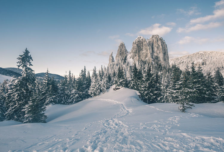 Beauty In Nature Cloud - Sky Cold Temperature Coniferous Tree Covering Environment Landscape Mountain Mountain Peak Nature No People Non-urban Scene Plant Scenics - Nature Sky Snow Snowcapped Mountain Tranquil Scene Tranquility Tree White Color Winter