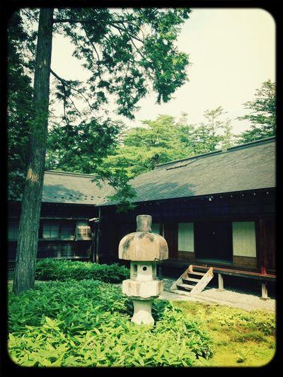 Japan Relaxing Green Gardening