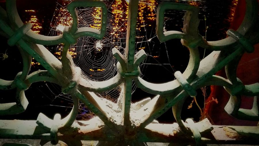 Nightphotography Taking Photos Spiderweb Relaxing bucharest by night Popular Photos Insect Photography Arachnophobia Open Edit Life