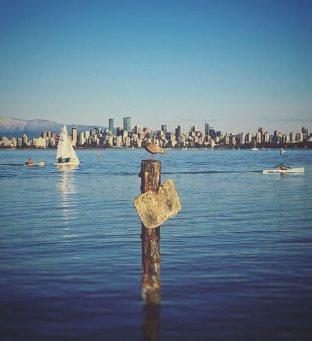 Just chillin' with a wonderful backdrop Water Clear Sky Blue Waterfront Day Outdoors Nature Sea Scenics Architecture Beauty In Nature Nautical Vessel Vancouver Cityscape Skyline Canada West Coast Sailboat