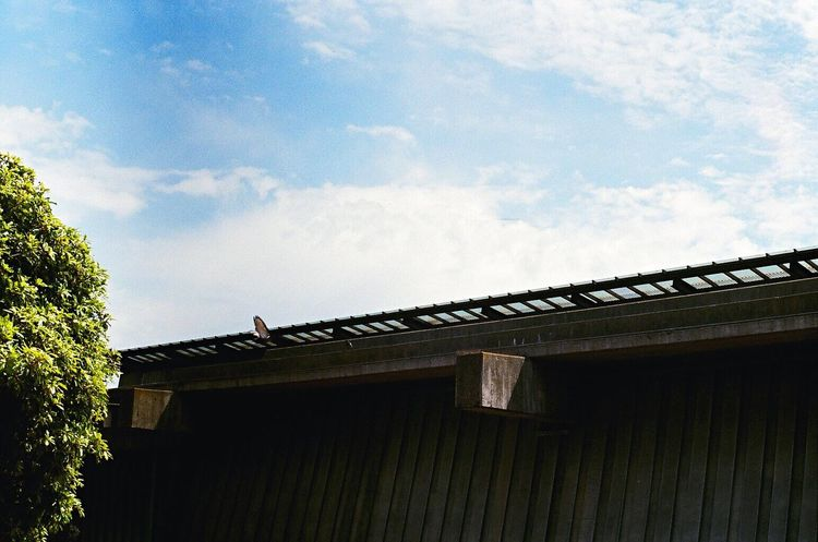No People Architecture Sky Cloud - Sky Film Zenit122 Lomo400 Koduckgirl