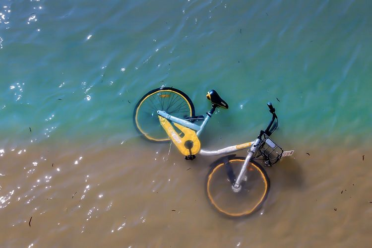 High angle view of bicycle swimming in sea