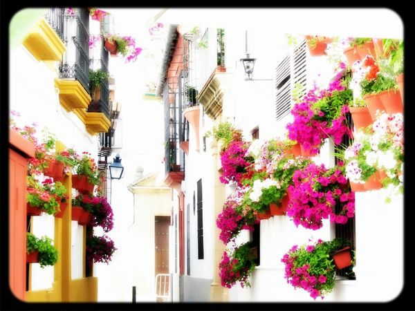 Calles de Córdoba Somosfelices Españoles Y Sus Fotos Eye4photography  Enjoying Life
