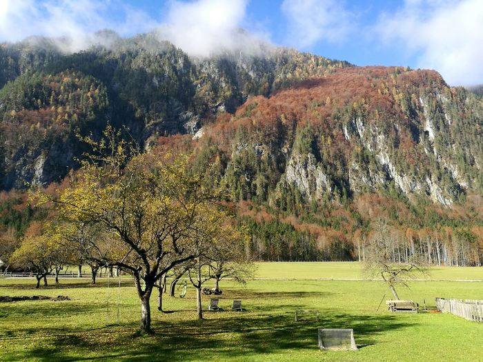 Heaven on earth Tree Nature Growth Sunlight Beauty In Nature No People Sky Sunbeam Outdoors Slovenia Logarska Dolina Colours Autumn Day Beauty In Nature Mountain Nature Landscape