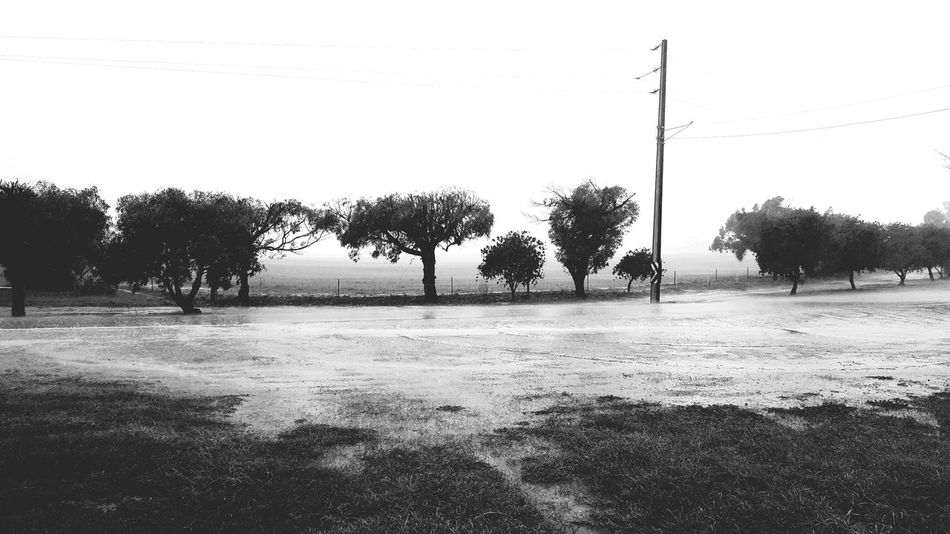 Eyeem Photography With A Smartphone EyeEm Gallery Eyem Market Mother Nature Stormy Weather Photography Hi! It seems the bad weather is nearly over, at least I hope so There should be some depictional data soon, my first EyeEm foto in a couple months. Happy to be connected again. Miserable weather ceased the moment i fjnished posting. Hello WorldCheck This Out Taking Photos EyeEm Random Shots Eyeemphotography