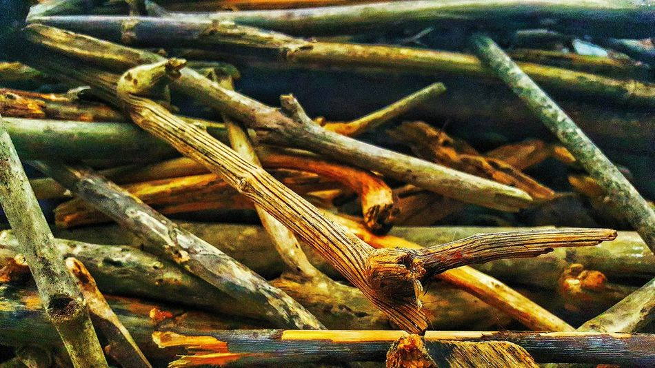 Sticks.....<3 Enjoying Life Stick Man