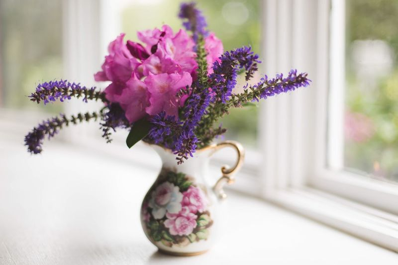 Close-up of purple flowers in vase