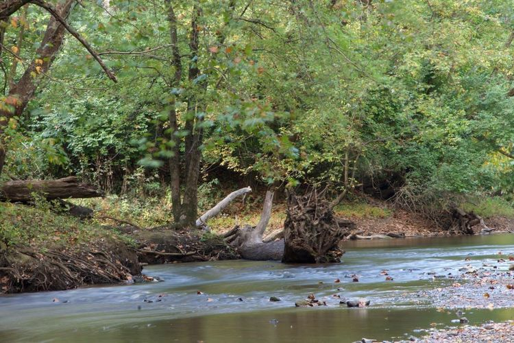 State Park  Indiana Long Exposure EyeEm Best Shots - Long Exposure