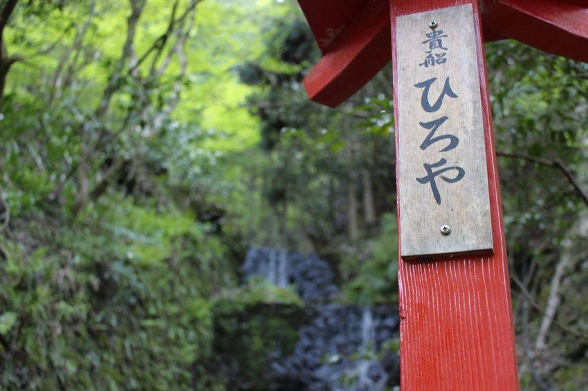 KIFUNE shinto shrine Relaxing Taking Photos Enjoying Life Soul Searching
