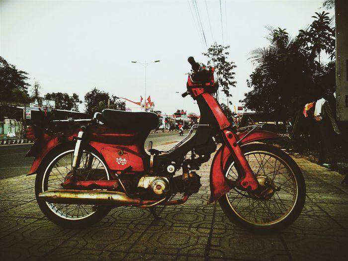 Motorbike Cub Vietnam Vietnamese