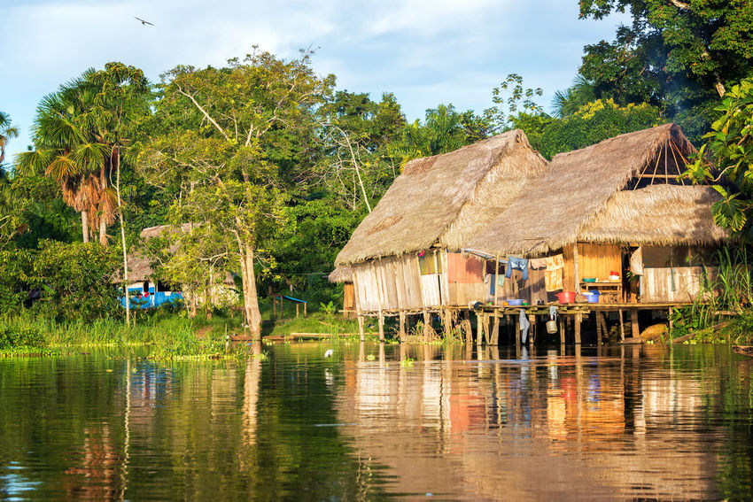 Late afternoon view of a shack on stilts in the Amazon rain forest with a beautiful reflection in the river Amazon Amazonia Background Flood Flooded Forest Green Holiday Hut Iquitos  Iquitos, Perú Jungle Lake Lodge Nature Park Peru Rainforest Reflection River Travel Tree Tropical Vacation Water