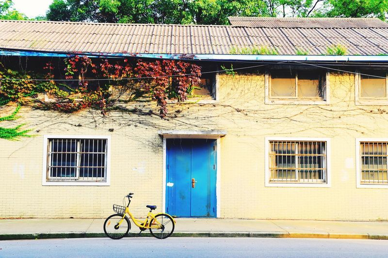 Architecture Building Exterior Bicycle Built Structure Outdoors Window Day No People