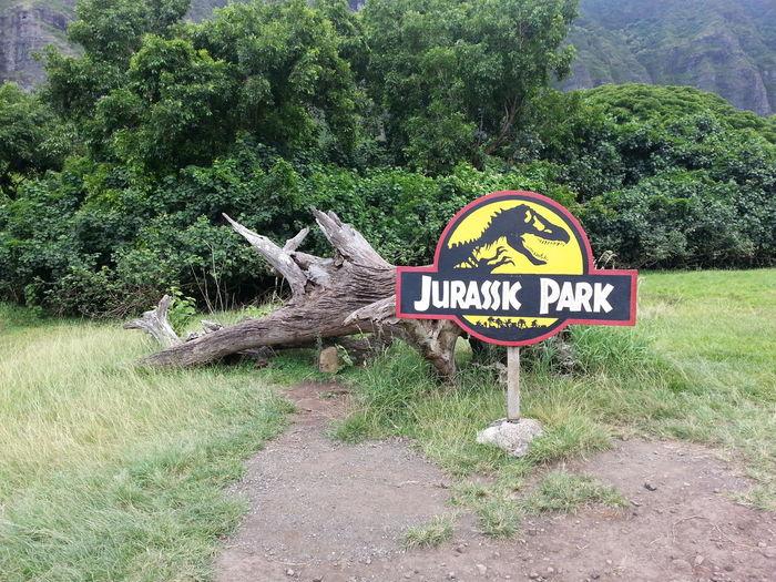 Oahu, Hawaii , JURRASIC PARK , Kualoa Ranch