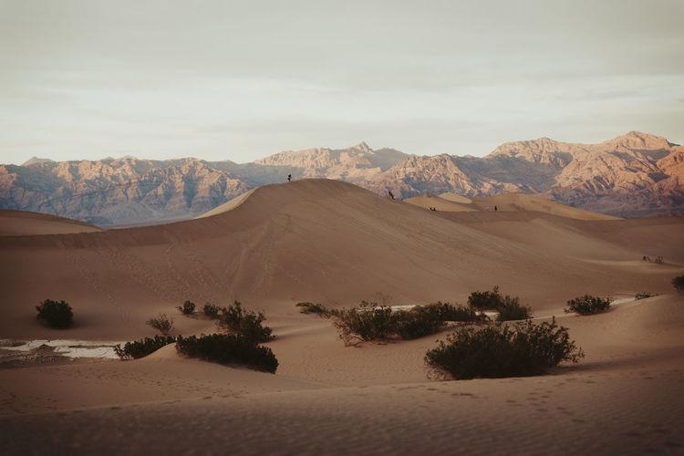 Scenic view of desert against sky