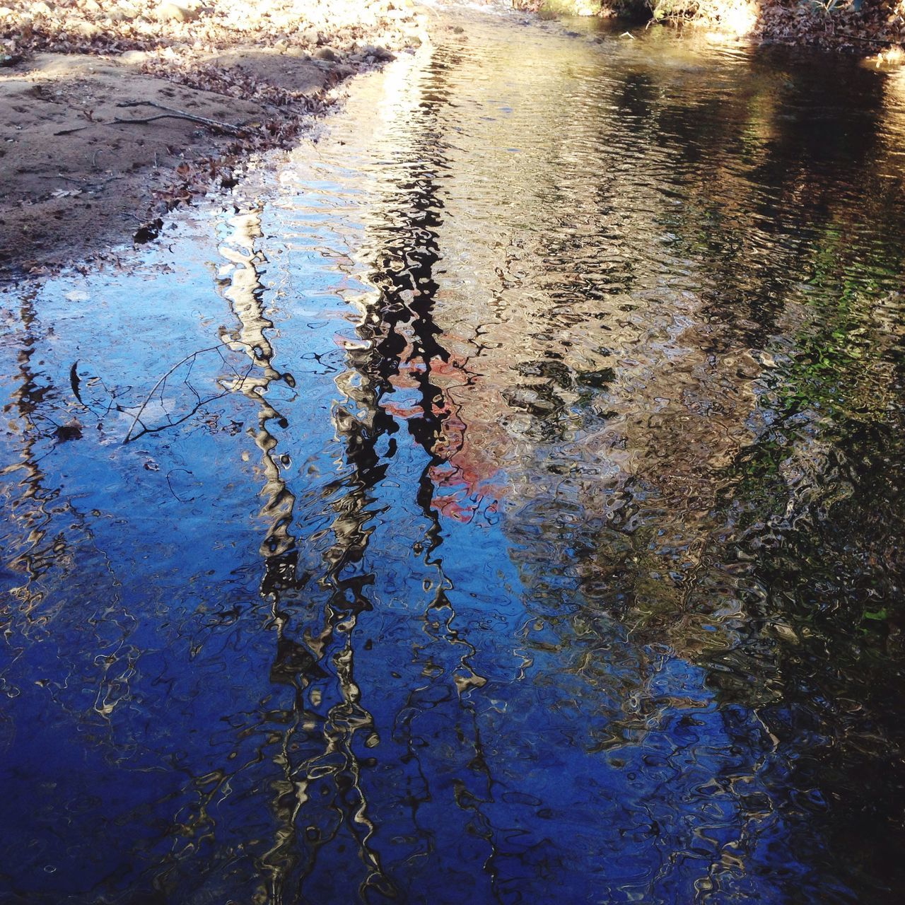 water, outdoors, reflection, high angle view, day, nature, puddle, animal themes, no people