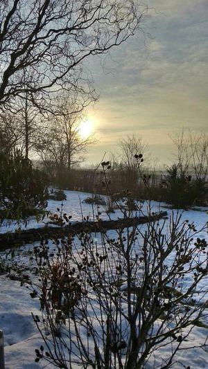 Winter Taking Photos Neujahr