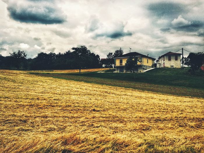 Sky Rural Scene Rural Building Wheat Field Yellow Cloudy Green Fields House Lonely Atmosphere Tree Sky Architecture Cloud - Sky Building Fall Autumn Farmland Agricultural Field Cultivated Land Settlement EyeEmNewHere