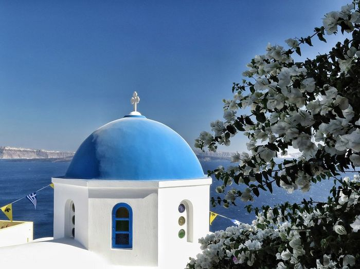 Tree Mittelmeer Mediterranean Sea Insel Island Kyclades Griechenland Kirche Churches Santorini, Greece Building Exterior Built Structure Architecture Belief Religion Place Of Worship Blue Building Dome Sky Spirituality Nature Plant Tree No People Sunlight Clear Sky Outdoors Day EyeEmNewHere