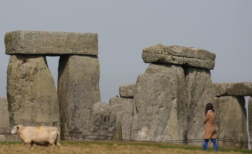 A wee bit of Henge ignored heartily by sheep. Sky One Person Lifestyles Architecture Full Length Ancient Nature History Solid Day Built Structure Leisure Activity Women The Past Tourism Clear Sky Standing Old Ruin Ancient Civilization