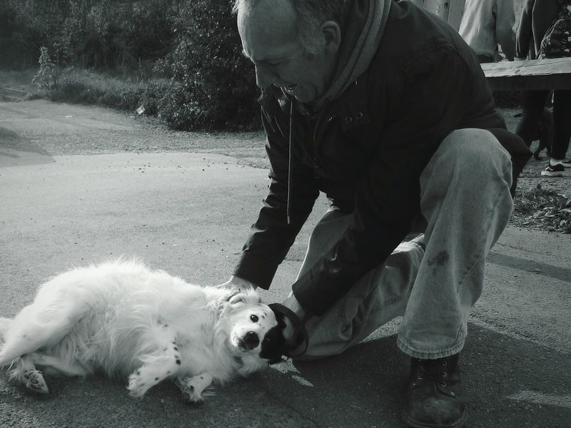 """""""man's best friend"""" Dog Pets Domestic Animals Animal One Animal Mammal Animal Themes People Outdoors One Man And His Dog One Person Playing Mental Health Awareness The Photojournalist - 2017 EyeEm Awards playing Adult Sport West Highland White Terrier Day Athlete The Street Photographer - 2017 EyeEm Awards The Portraitist - 2017 EyeEm Awards"""