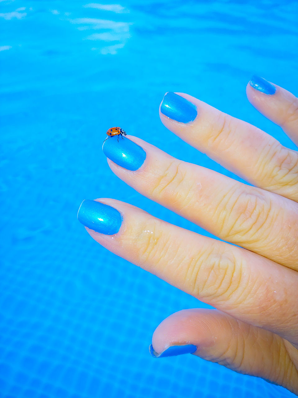 human hand, hand, human body part, finger, human finger, blue, one person, body part, real people, nail, nail polish, adult, close-up, water, women, lifestyles, day, fingernail, nail art, human limb