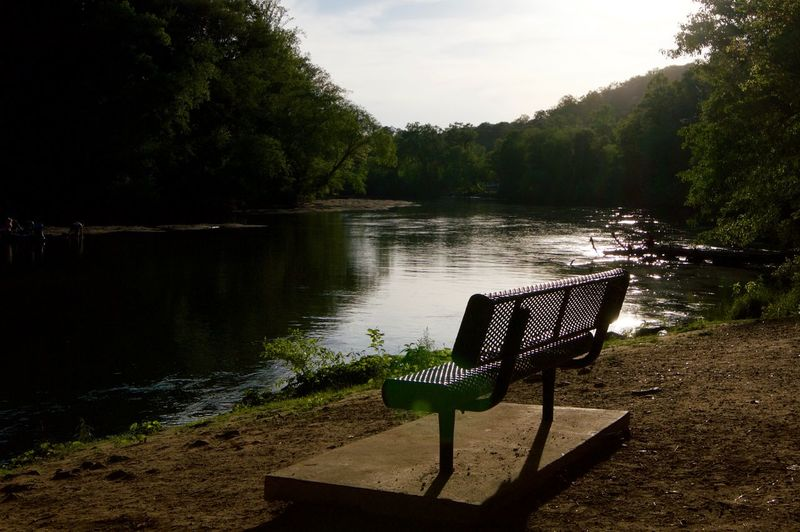 Bench By River In Forest