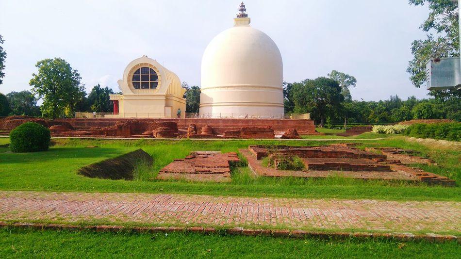 Buddha's Temple