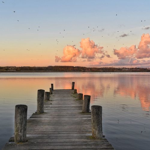 November Silence Water Sunset Nature Beauty In Nature Sky Scenics No People Tranquility Outdoors Day Reflection_collection Aarhus, Denmark Clouds Reflection Pier Lake Autumn Fall November Birds Denmark Pink Pink Sky Landscape Fall Colors