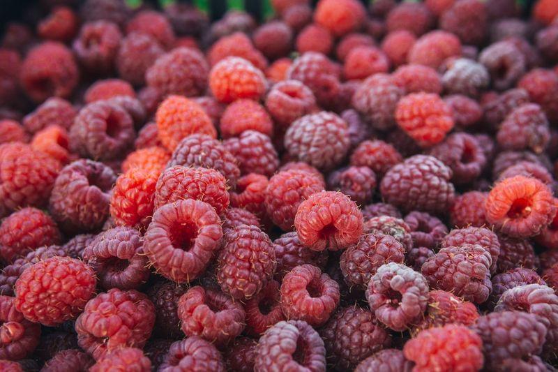 Full frame shot of raspberries