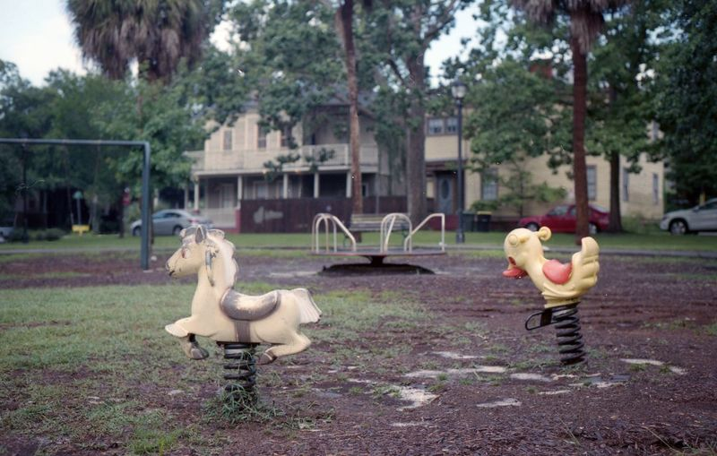 Bird Tree Child Outdoor Play Equipment Slide Seesaw Merry-go-round Monkey Bars Coiled Spring Swing Flamingo Rooster Hen Playground Chicken - Bird Slide - Play Equipment Cockerel Jungle Gym Baby Chicken