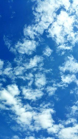 Blu sky. Blue Sky Sky Butiful Sky