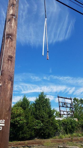 Telephone Cable Cut Wires Brightly Lit Sunny Day Sky Hanging Low Angle View Cloud - Sky Tree Day Outdoors No People Workview Telephone Pole Damage Repair Out Of Service