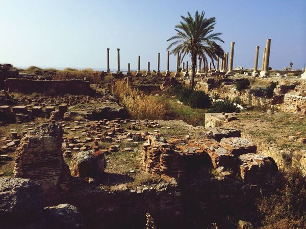 Roman baths and columns at Al-Mina archaeological site Ruins World Heritage Site Traveling Lebanon