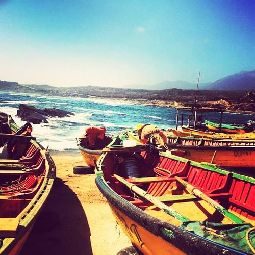 Chile Coquimbo LaSerena Cea  Mar Enjoying Life Taking Photos Relaxing Latin America Exploring New Ground