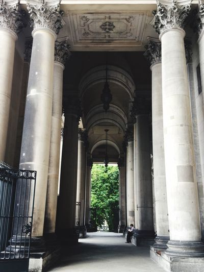 View of columns
